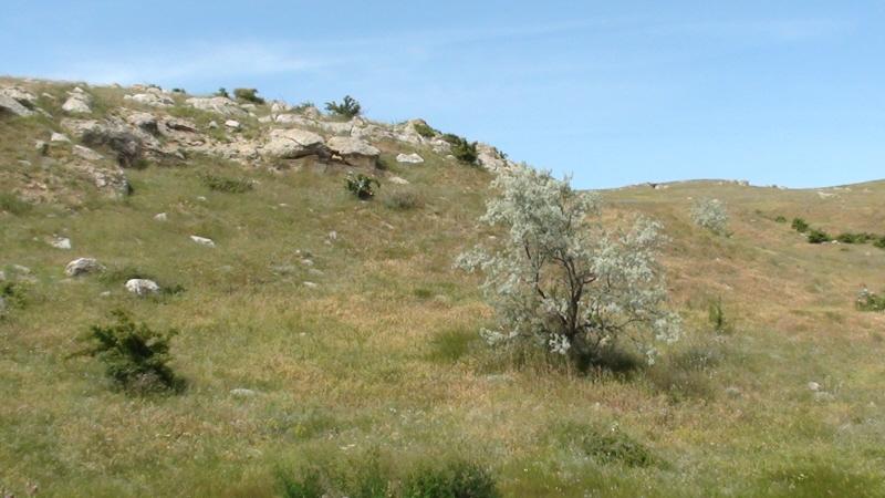 Kazantyp. Rezerwat geologiczno-przyrodniczy