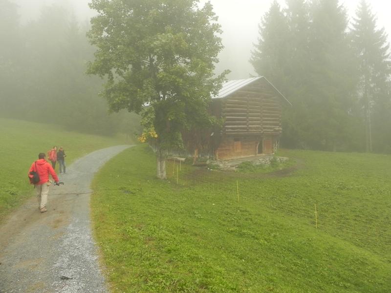 Flims-Laax-Falera. Kulinarne szlaki u podnóża Alp