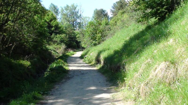 Chłapowo. Rezerwat przyrody Dolina Chłapowska