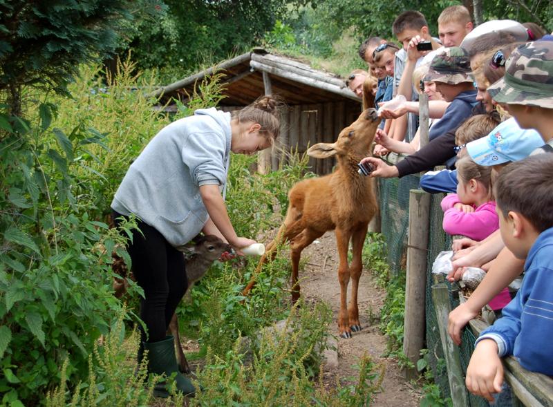 Kadzidłowo. Park dzikich zwierząt