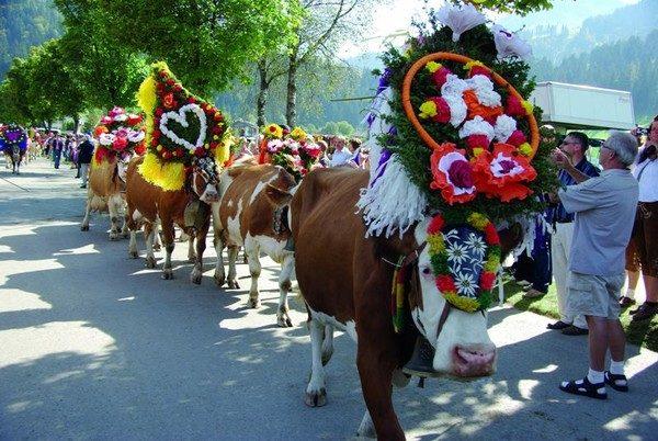 Wildschönau. Krowy wracają do zagród
