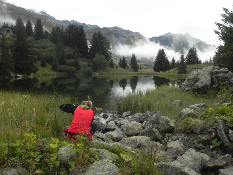 Parc Ela Przez las i mgłę na Alp Flix