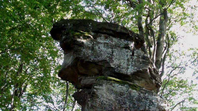 Jaworzyna Krynicka Diabelski Kamień leży przy szlaku