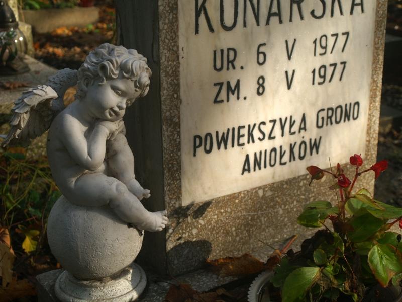 Szczecin. Pola aniołków na Cmentarzu Centralnym