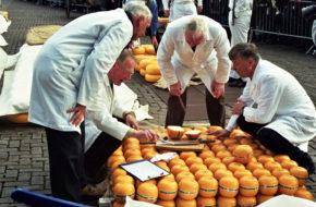 Alkmaar Tradycyjna giełda serów na rynku