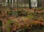 Łódź. Ostatni pałac bawełnianego magnata