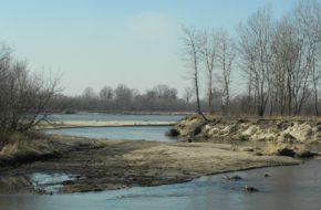 Świder Rezerwat u ujścia rzeki do Wisły