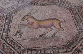 Akwileja Mozaiki na posadzkach najstarszego kościoła