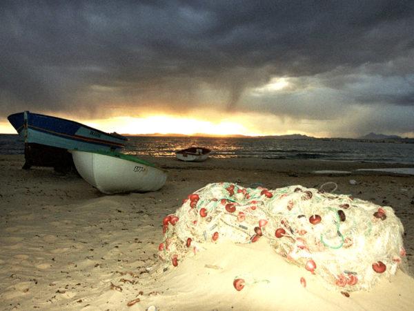 Hammamet. Plaża, morze i sporo zabytków