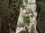Kunming. Shi Lin, czyli Kamienny Las