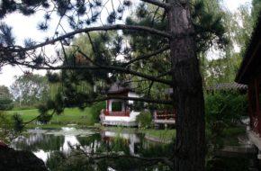 Berlin Herbatka w ogrodzie chińskim