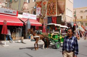 Tauzar Perła wśród tunezyjskich oaz