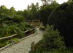 Bolestraszyce. Arboretum wokół pałacu i starego fortu