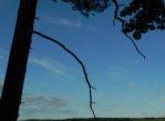 Jezioro Borzechowskie. Najgłębszy akwen na Kociewiu