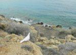 Cavo Gkreko. Przyrodniczą ścieżką do plaży Konnos