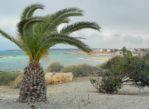 Agia Napa. Jesienny spacer na plaży świętej Tekli