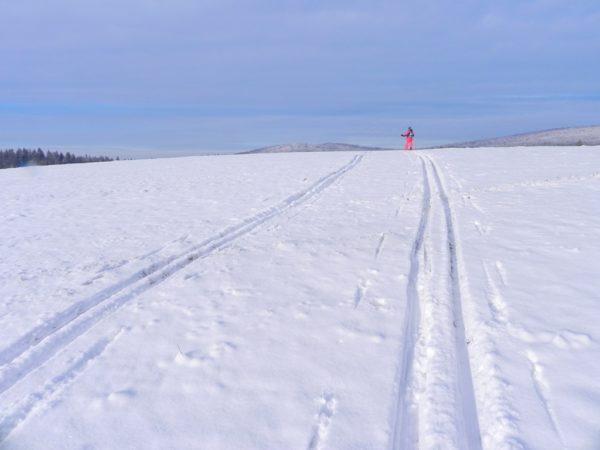 Banica. Śnieżne Trasy Przez Lasy