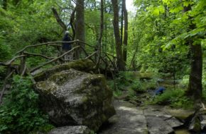 Czartowe Pole Do papierni, doliną potoku Sopot