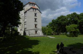 Wojciechów Wieża Ariańska ma wielu lokatorów