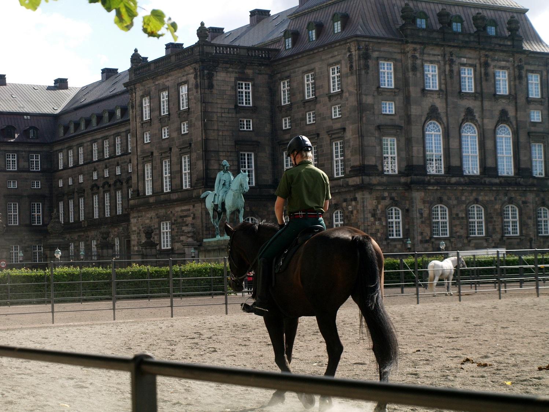 Kopenhaga. Szlakiem konnych pomników