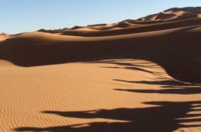 Erg Chebbi Zachód słońca na pustyni