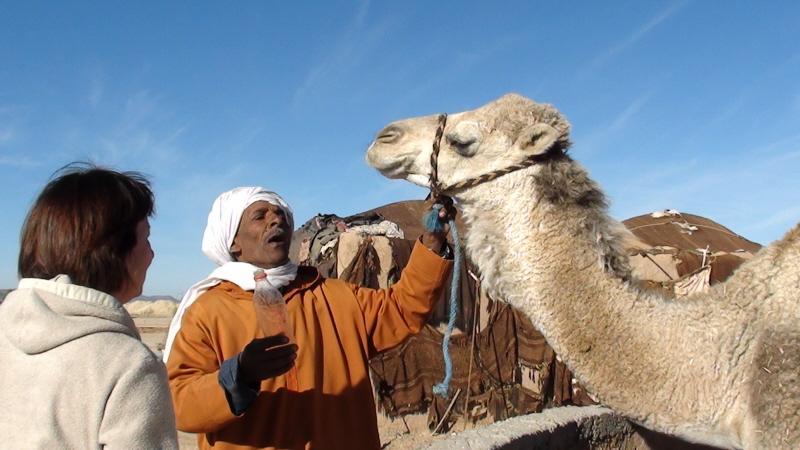 Sahara. Khettary, czyli podziemny system wodny