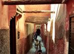 Marrakesz. W murach medyny