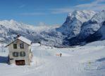 Wengen. Na nartach pod ścianą Eigeru