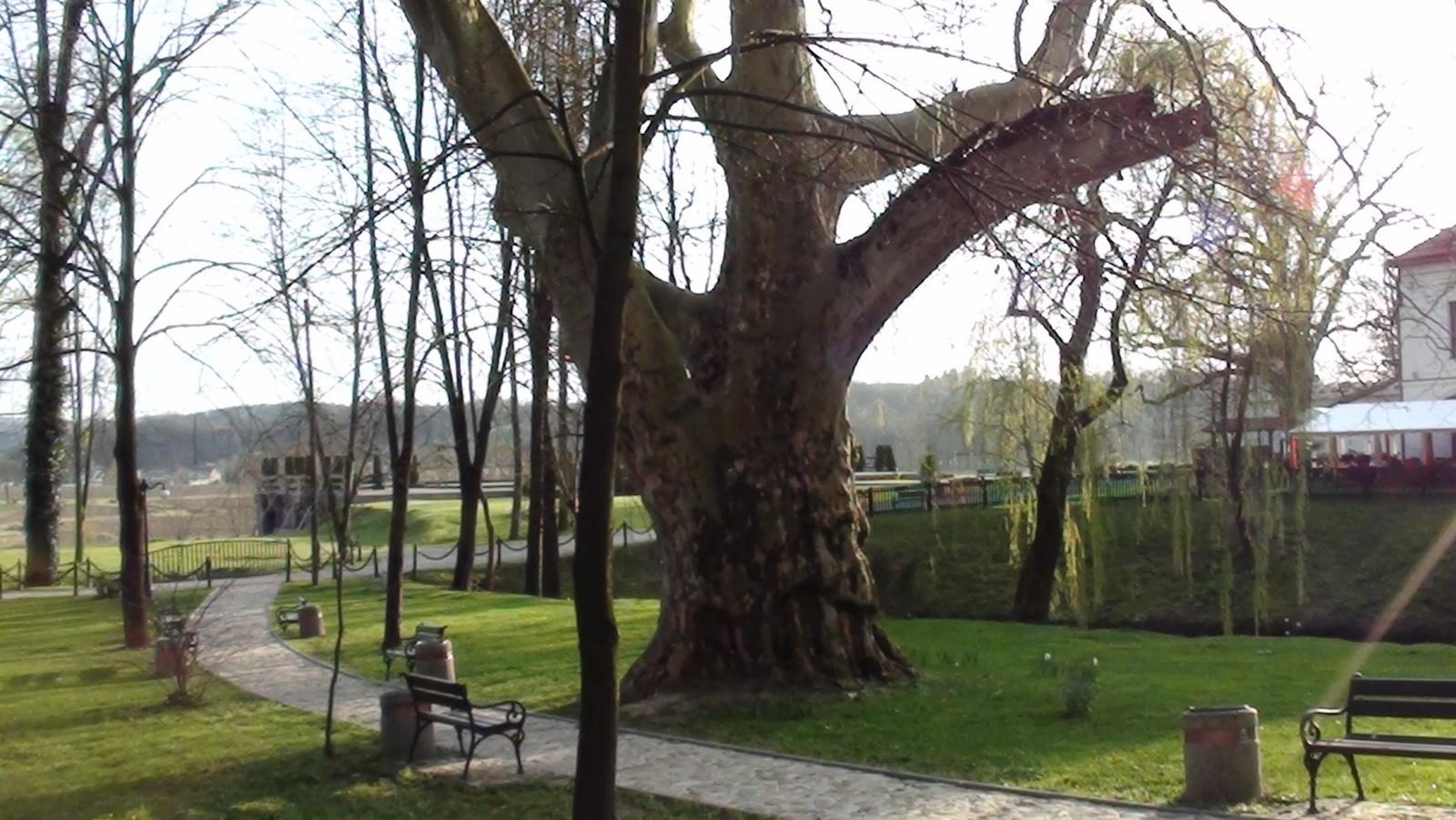 Dubiecko. Pałac Stadnickich i Krasickich – dziś hotel