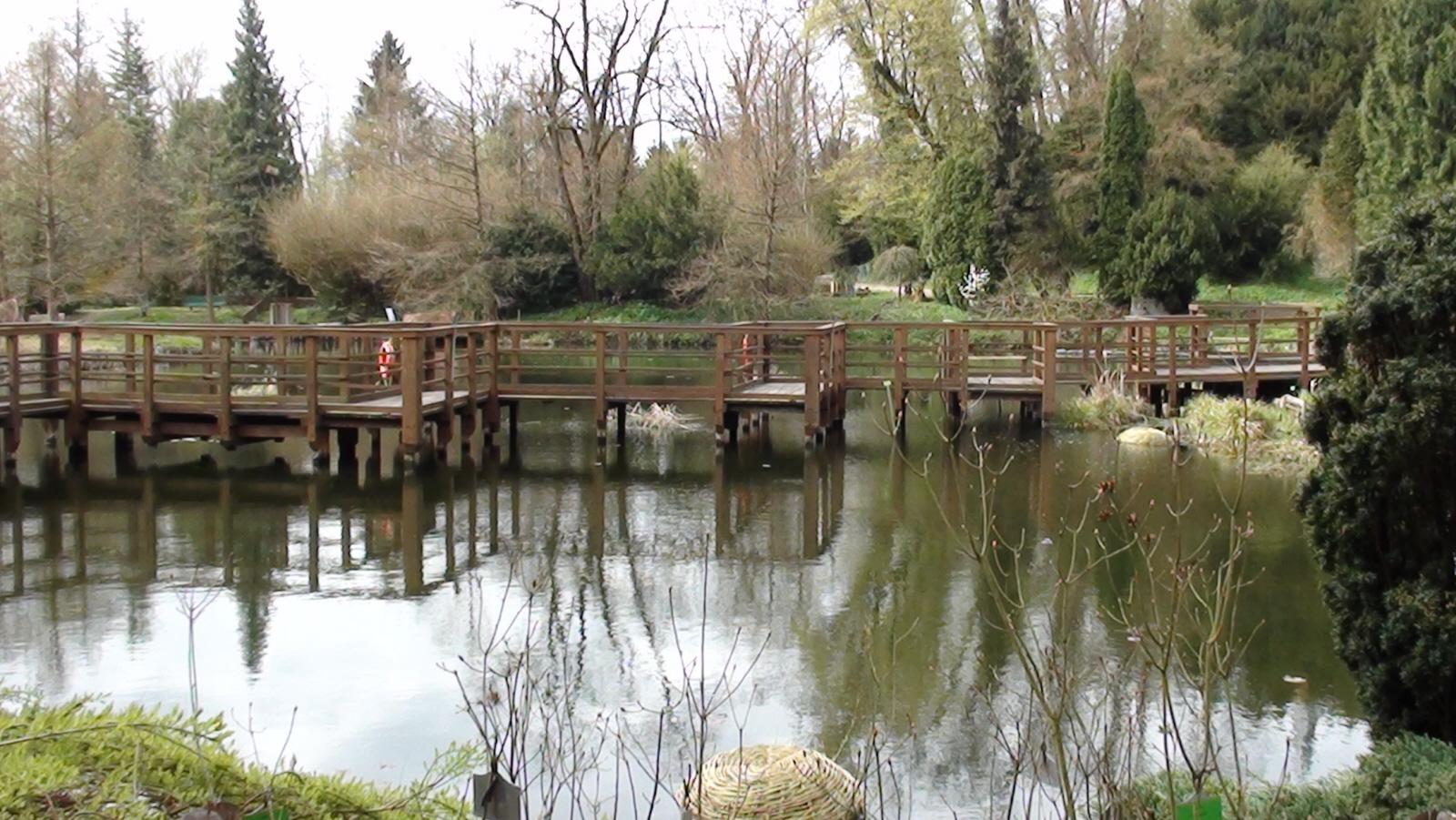 Bolestraszyce. Arboretum wokół fortu i pałacu