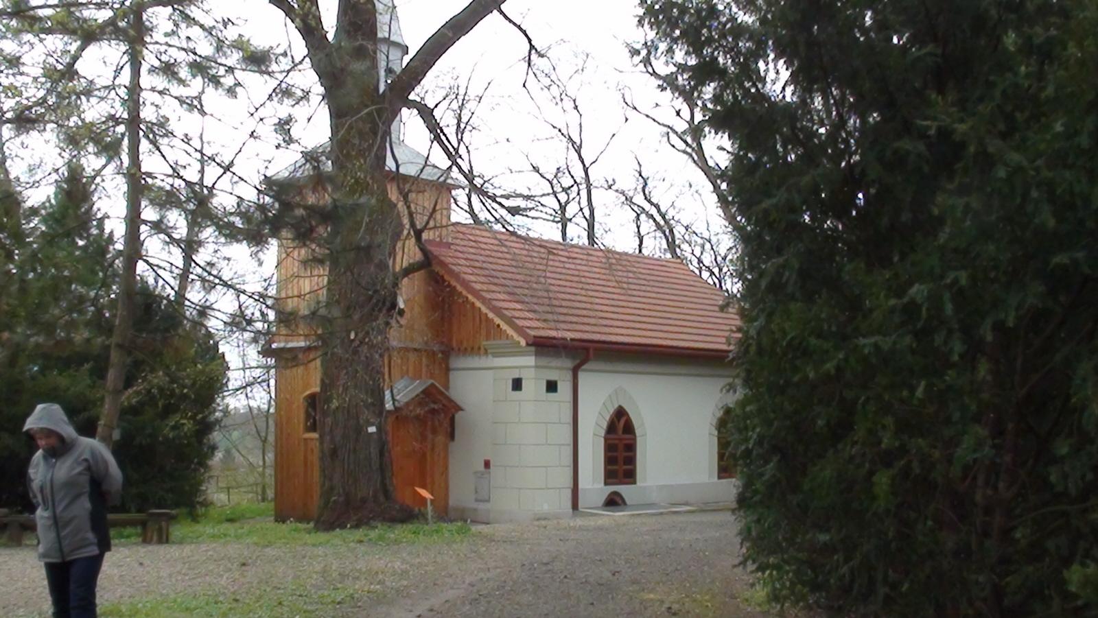 Bolestraszyce. Arboretum w ogrodach dworskich