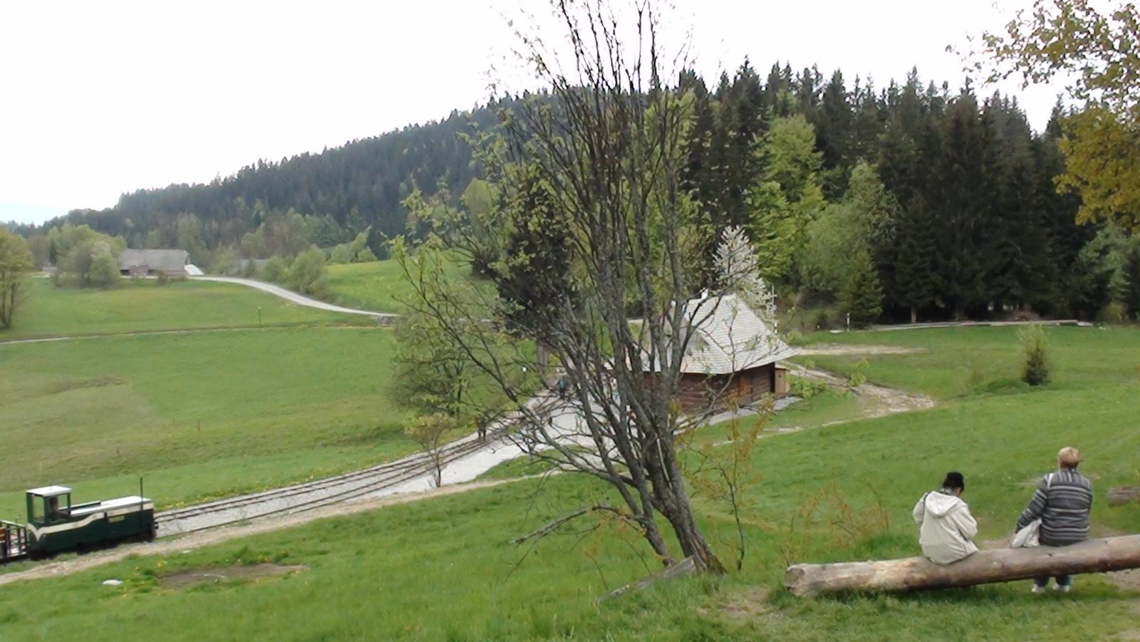 Tanečnik. Orawska kolejka leśna znów wozi ludzi