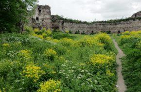 Buczacz Ruiny dawnej podolskiej twierdzy