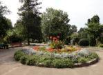 Kijów. Uniwersytecki ogród botaniczny