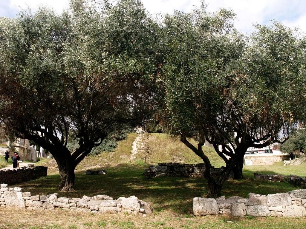 Ateny. Keramejkos, starożytna grecka nekropolia