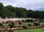 Chenonceaux. W ogrodach i wnętrzach Zamku Dam