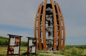 Malá Tŕňa Spojrzenie z wieży na słowacki Tokaj