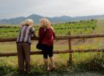 Malá Tŕňa. Spojrzenie z wieży na słowacki Tokaj