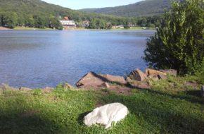 Vinianske Jazero Małe jeziorko w górach Wyhorlat
