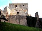 Točník. Gotycki zamek i niedźwiadki w fosie
