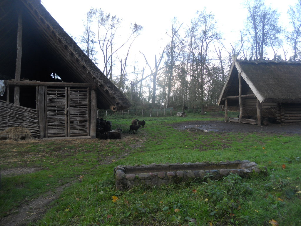 Biskupin. Jak odkrywano osadę sprzed 2700 lat