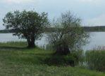 Siedlce. Nad wodę, czyli zalew na Muchawce