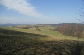 Wzgórza Iwonickie Żabia Góra z Iwonicza-Zdroju