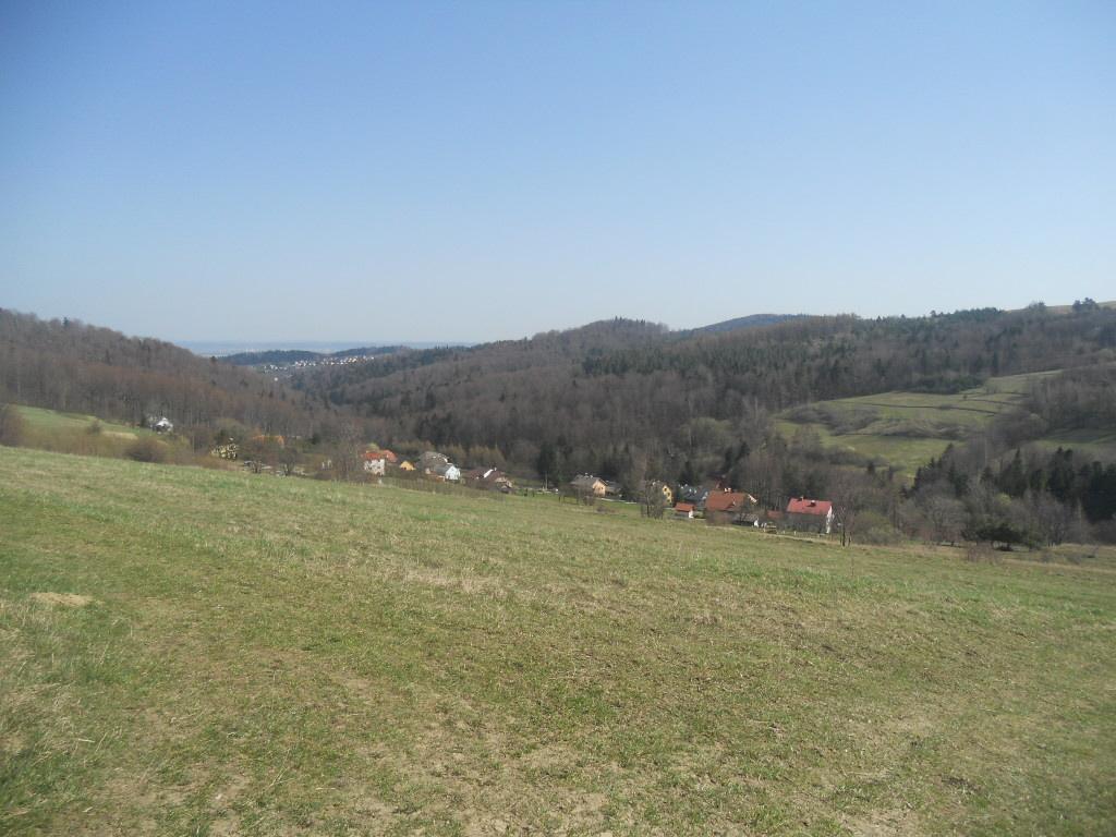Wzgórza Iwonickie. Żabia Góra z Iwonicza-Zdroju