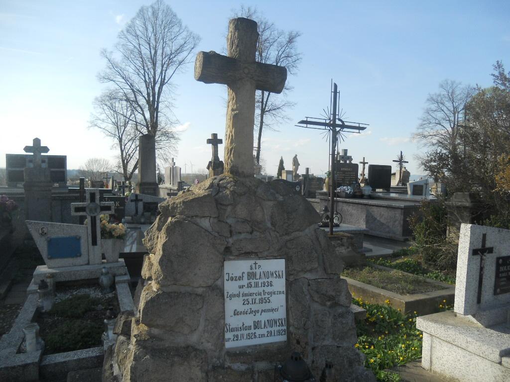 Rymanów. Dęby Pamięci na cmentarzu