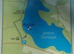 Puszcza Romnicka. Rechot nad brzegiem jeziora