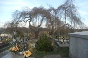 Iwonicz Nekropolie i grób Nieznanego Żołnierza