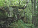 Beskid Dukielski. Piotruś ma skały na szczycie