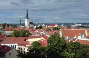 Tallin Ponad dachami nadmorskiego miasta