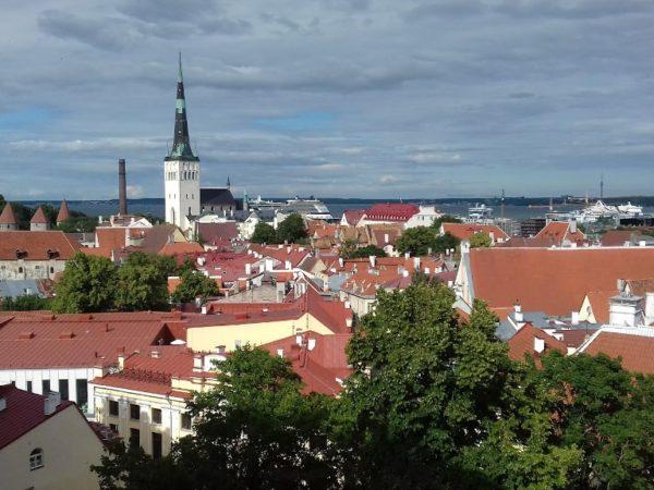 Tallin. Ponad dachami nadmorskiego miasta